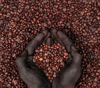 Increased Caffeine Decreases Depression Risk