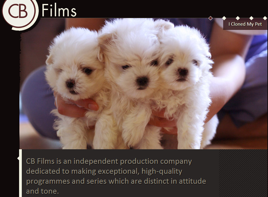 UK Film Makers