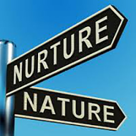 What causes bipolar? Did nature or nurture cause my bipolar disorder? Read on to see how I examine the nature and nurture of my bipolar and personality traits.