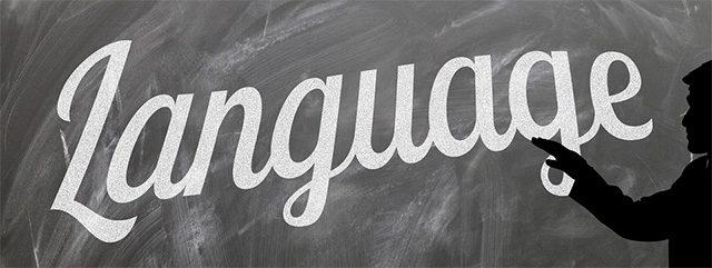 The Language of Insanity