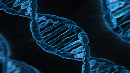 Bipolar, Schizophrenia and Depression Are Genetically Linked